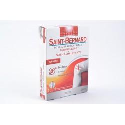 SAINT-BERNARD Genouill articul