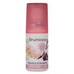 BRUMIZEA Désinfecte et désodorise les aspirateur sans sac Parfum fleuri Spray de 30 ml
