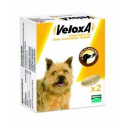 VELOXA Vermifuge pour chiens Boite de 2 comprimés à croquer