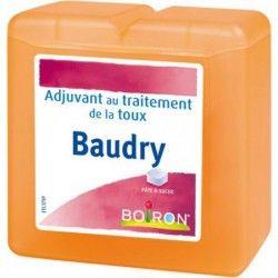 PATES BAUDRY Pâtes pectorales à sucer Boite de 70g