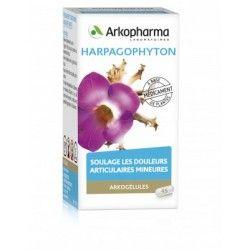 ARKOGELULES Harpagophyton Gélules Flacon de 45